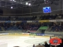25.01.2015 | Dresden vs. Bad Nauheim